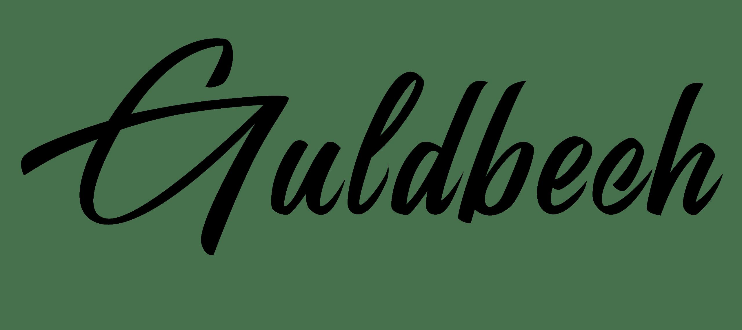 Guldbech Ure & Smykker